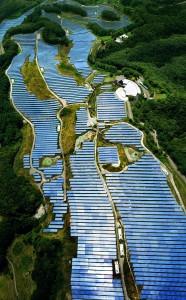 Solar panels Japan gold course